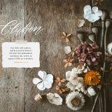 Blühende Worte. Die Bibel